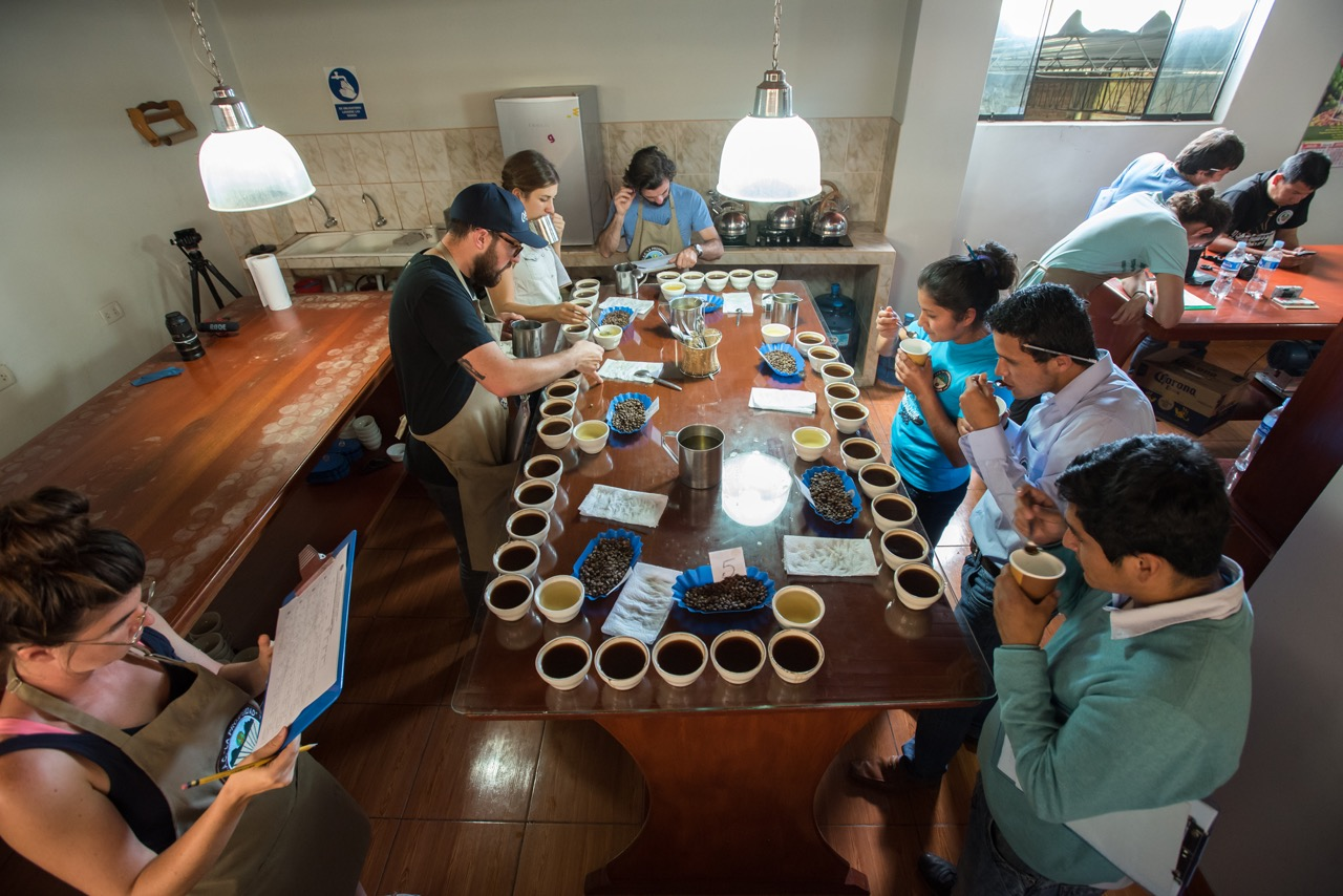 Photo from above of people cupping coffee at Chirinos cooperative